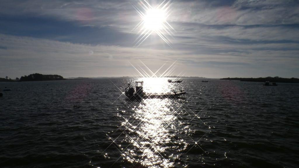 morbihan vue golfe mer bateau soleil ciel bleu ostréiculture ostréiculteur huîtres 100% naturelles captain marée